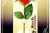 آموزش تصویری ساخت گلدان حباب لامپ