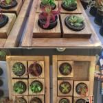 گلدان دست ساز چوبی فروشی